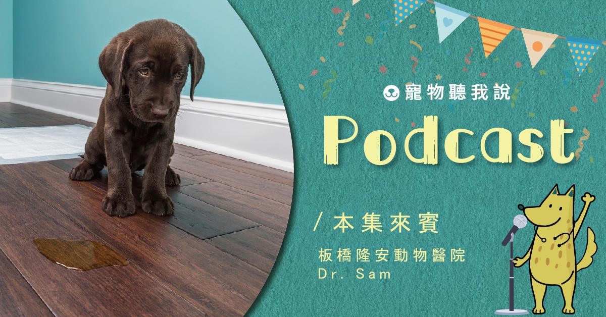 【寵物聽我說】EP22-狗狗亂尿尿,該怎麼教才能讓牠知道?|專業獸醫—姚勝隆