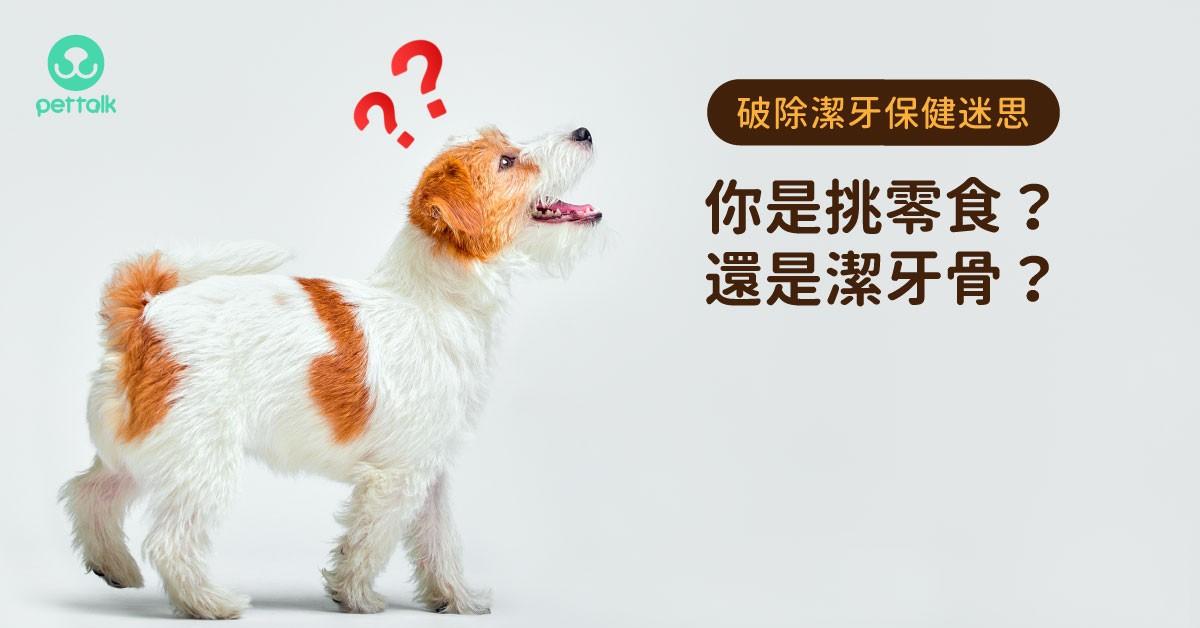 【破除潔牙保健迷思】獸醫師:你是挑零食還是潔牙骨?|專業獸醫—楊孝柏