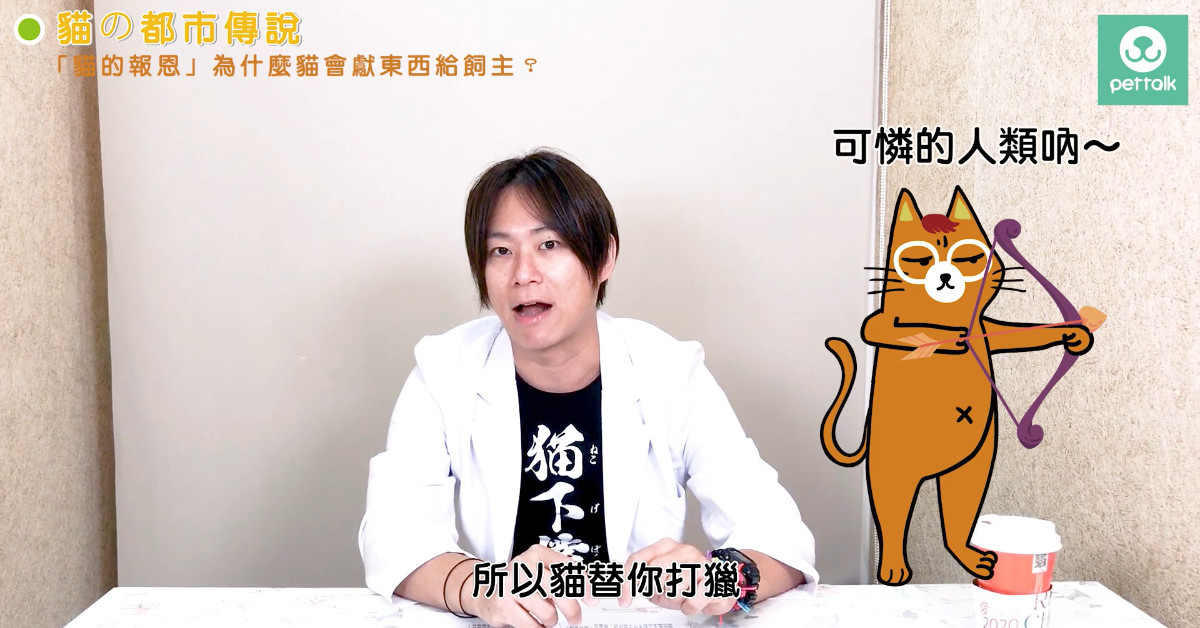 【PetTalk專訪】貓の都市傳說PART4—「貓的報恩」為什麼貓會獻東西給飼主?|貓行為獸醫—林子軒