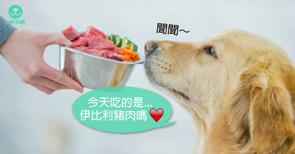 生食真的很棒嗎?好處×隱憂×均衡的重要|營養獸醫師—王恬中Tammie