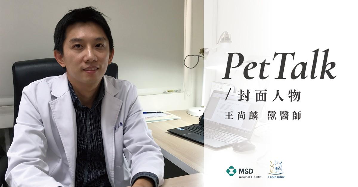 肥貓常見內分泌疾病|專業獸醫—王尚麟