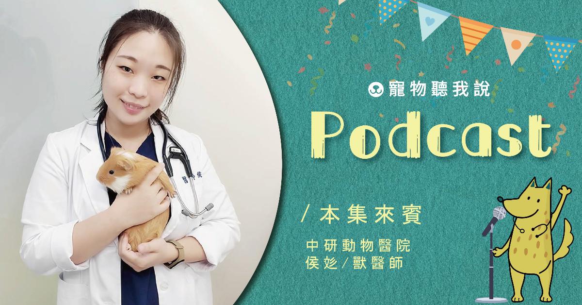 【寵物聽我說】EP29-醜話說在前頭系列–你想養倉鼠嗎?|專業獸醫—侯彣