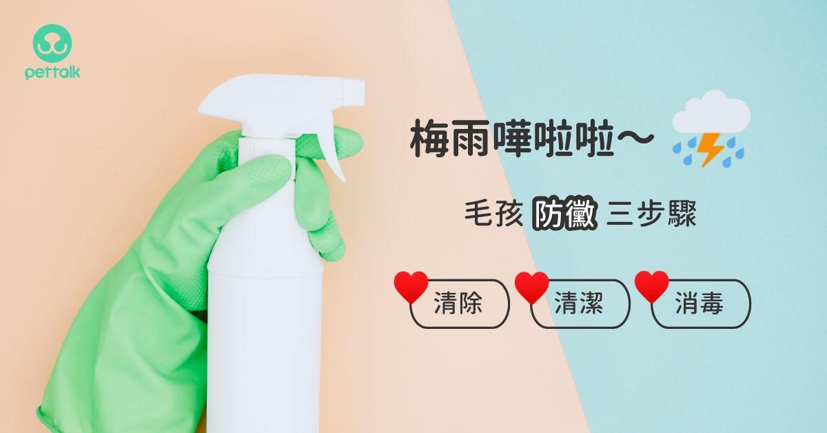 又到梅雨季,毛孩防黴三步驟「清除、清潔、消毒」|專業獸醫—王小玲