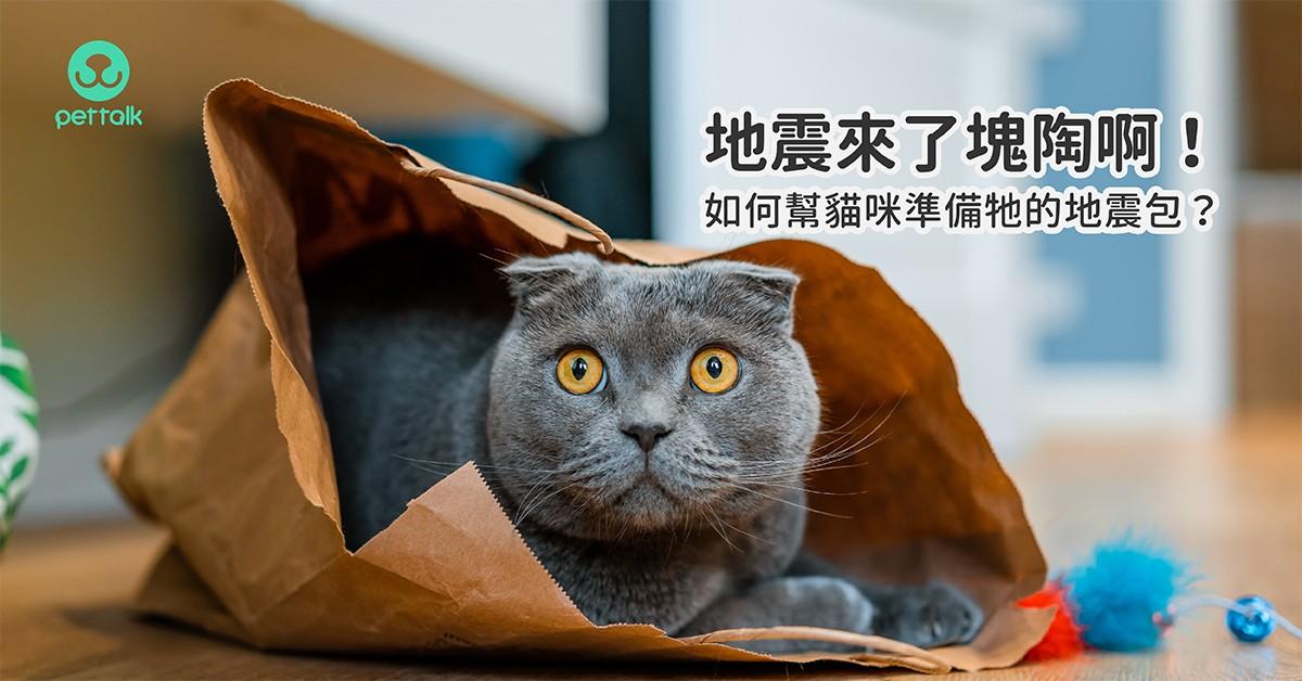 塊陶啊!如何幫貓咪準備牠的地震包?|貓行為獸醫—林子軒