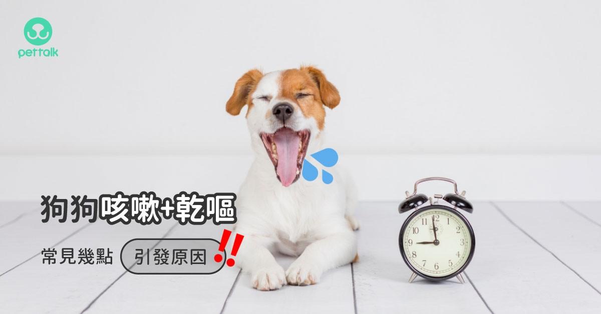 我家狗狗常常咳嗽加乾嘔,是什麼原因?|專業獸醫—王文秀