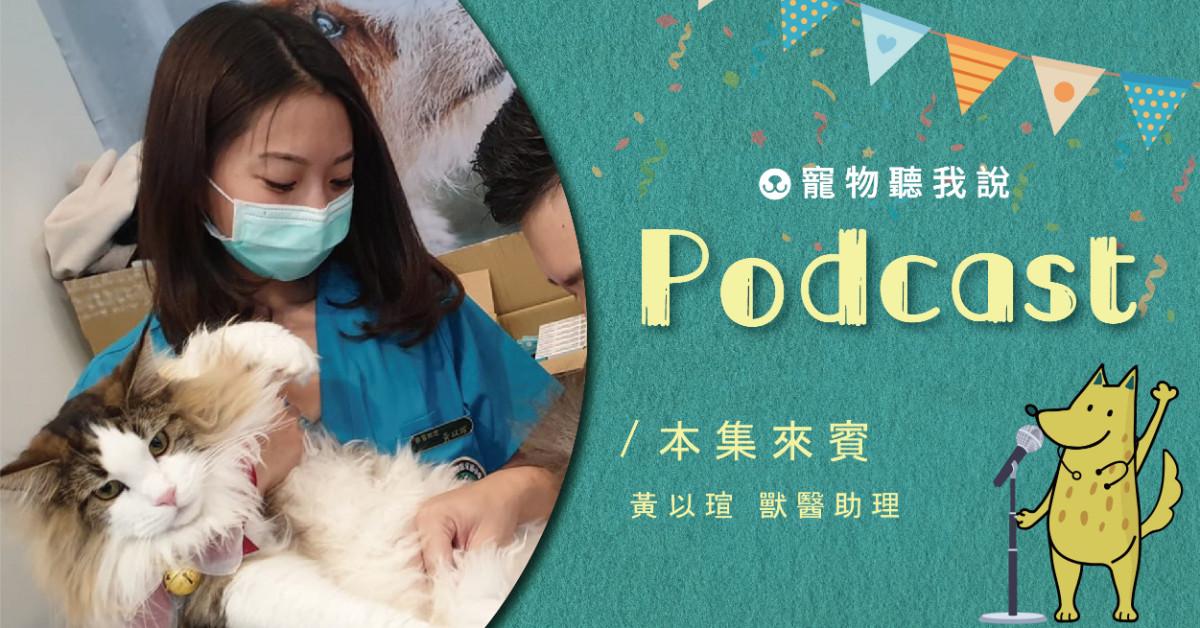 【寵物聽我說】EP13-毛孩看診好崩潰,獸醫助理教你這麼做!|獸醫助理—黃以瑄