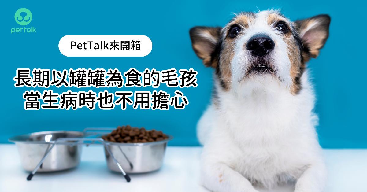 【PetTalk來開箱】長期以罐罐為食的毛孩,當生病時也不用擔心 專業獸醫—姚勝隆