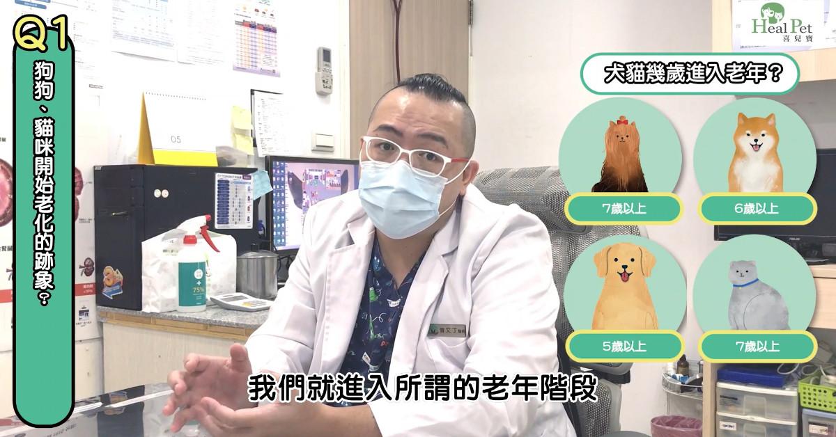【PetTalk專訪】和你一起慢慢變老~熟齡毛孩的保健需求與以往不同|專業獸醫—曾文丁