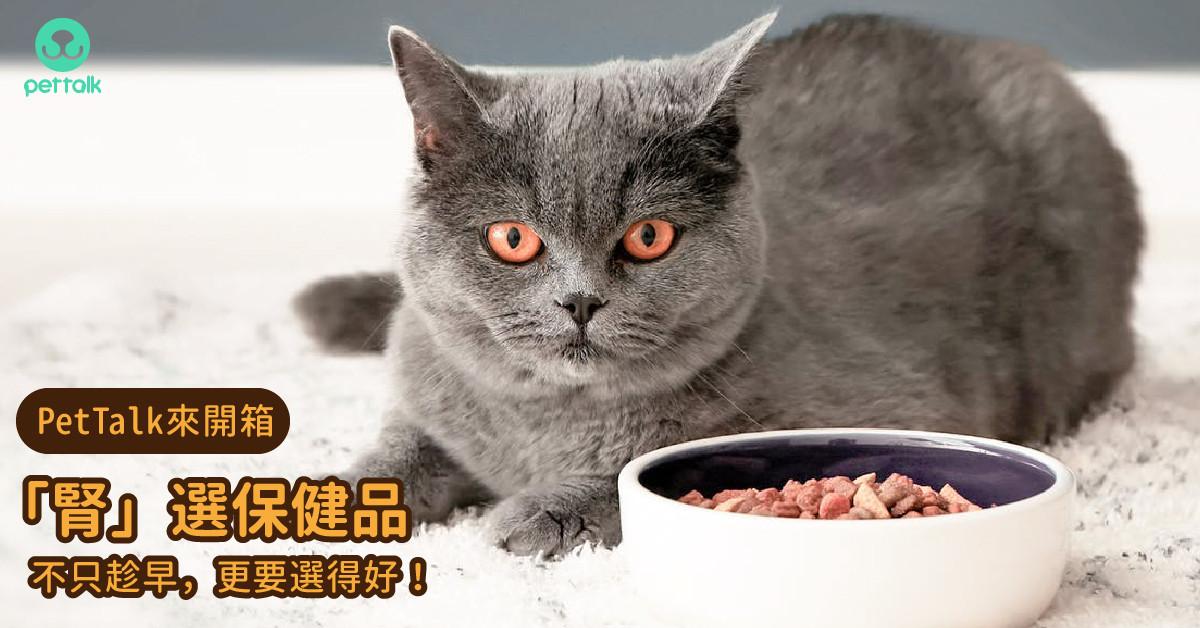 【PetTalk來開箱】為毛孩「腎」選保健品,不只趁早,更要選得好!|專業獸醫—胡譽嚴
