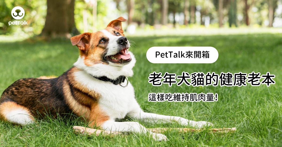 【PetTalk來開箱】老年犬貓的健康老本,這樣吃維持肌肉量|專業獸醫—吳展祥