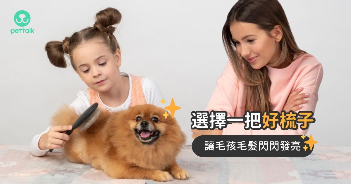 選擇一把好的梳子,讓毛孩擁有一身閃亮毛髮|寵物美容老師—林文琳