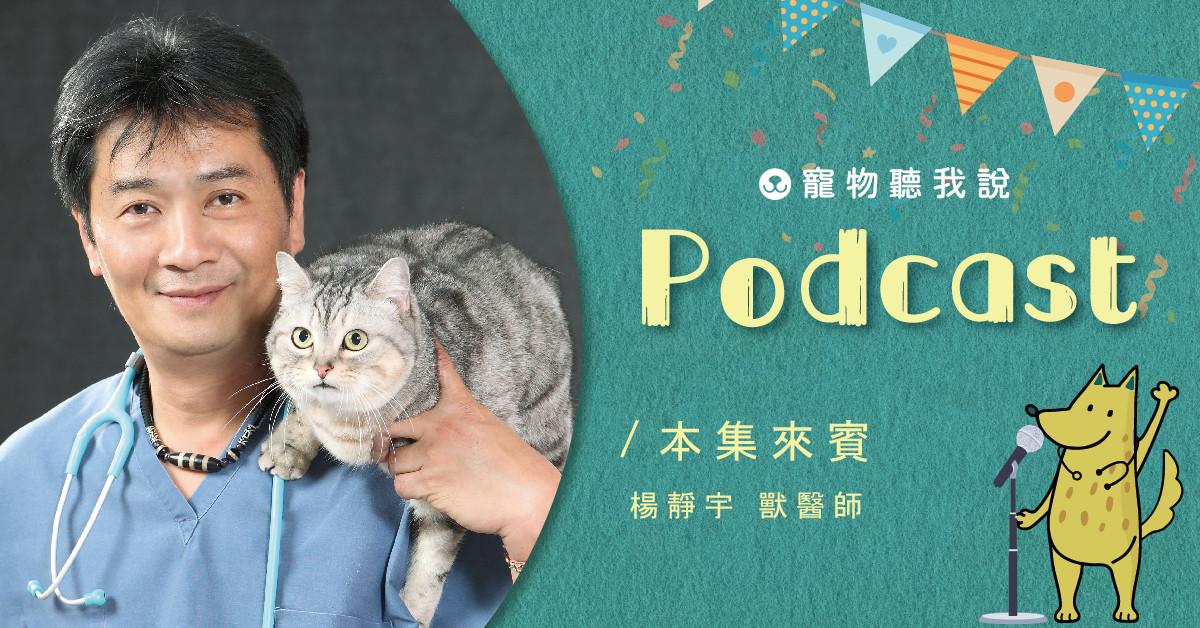 【寵物聽我說】EP01-毛孩過年常見的急診狀況|專業獸醫—楊靜宇