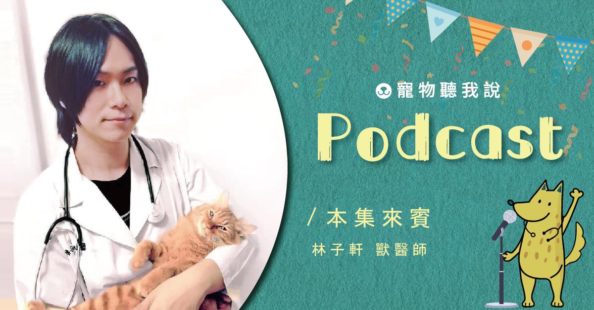【寵物聽我說】EP15-幾萬年來始終如一,別再把貓當成狗了!|專業獸醫—林子軒